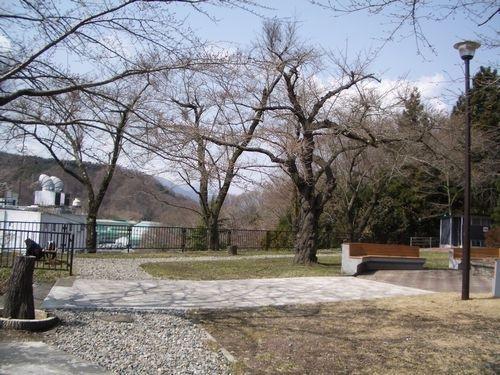 釜石薬師公園(500)