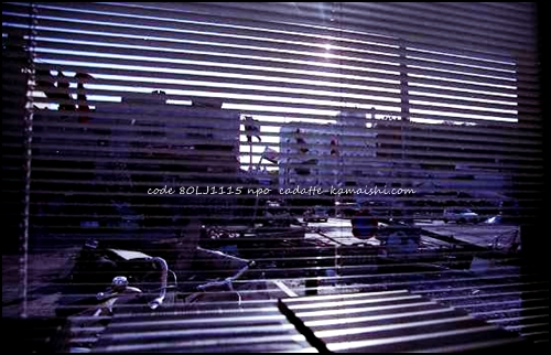 [out of the window] code 80LJ1115
