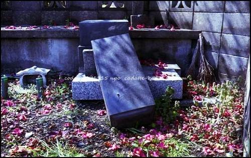 [grave] code 80LJ1115