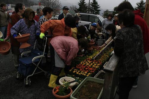 上中島仮設にお花がいっぱい&かわいいミサンガ